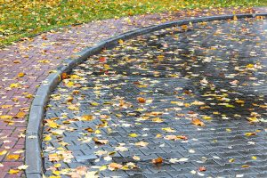 Autumn Safety Tip #1: Clean Up Fallen Leaves