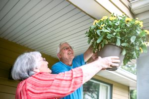 Senior Couple Hanging Flowers at Home